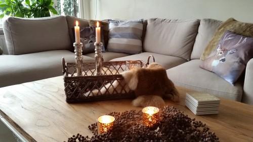 Photodiary: de woonweek van Michanou at Home