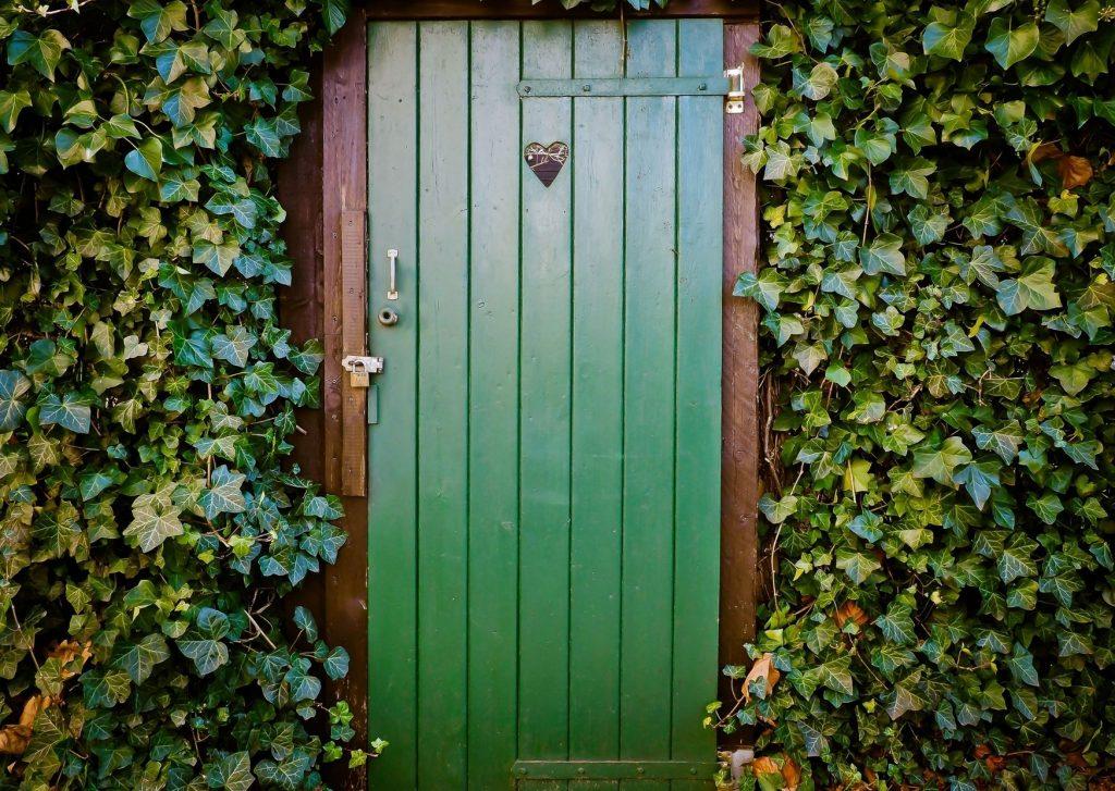 Groene schuttingdeur met hartje hedera